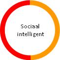 Sociaal intelligent
